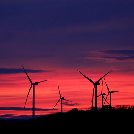 wind: harnessing the power of renewable energy.